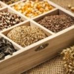 Как собрать семена, чтобы сохранить сортовые признаки