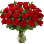 Как вырастить розу из букета в саду