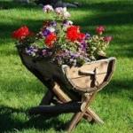 Как создать необычный цветник