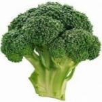 Капуста брокколи - выращивание