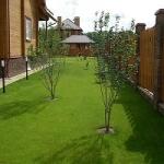 Садовый газон