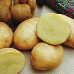 Картофель и его целебные свойства