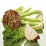 Сельдерей - выращивание листового, корневого и черешкового сельдерея