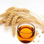 Масло зародышей пшеницы - свойства и применение. Отзывы об использовании